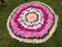 Blumenteppich_Rannungen_3