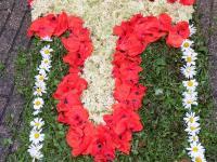 Blumenteppich_1